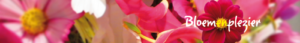 cropped-bloemenplezierbanner